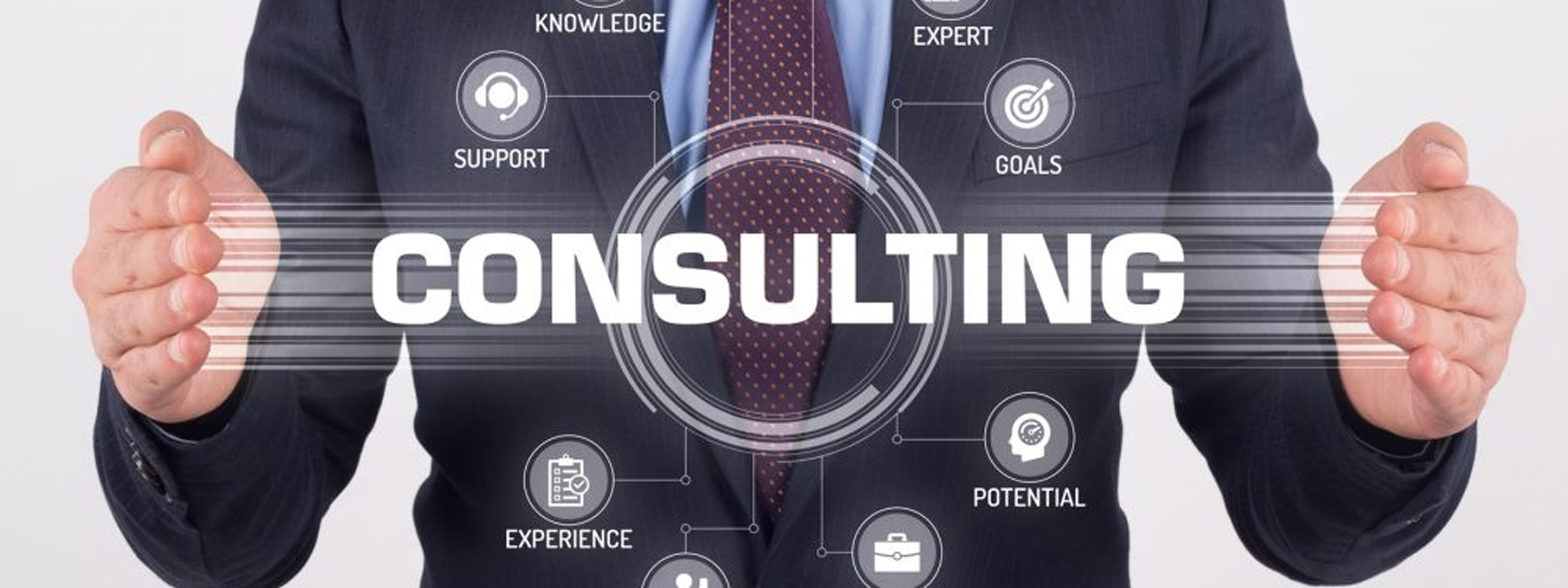 Janitorial Consulting
